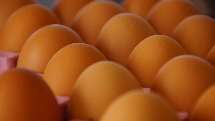 Простой совет, чтобы сохранить яйца свежими
