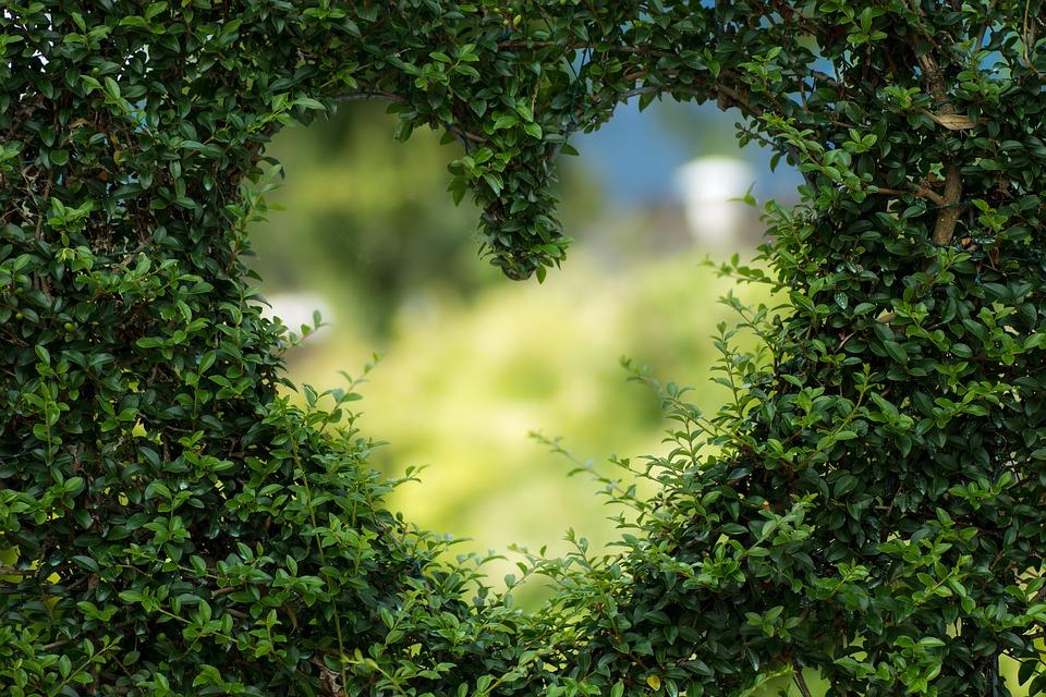 Красивый поучительный рассказ о любви