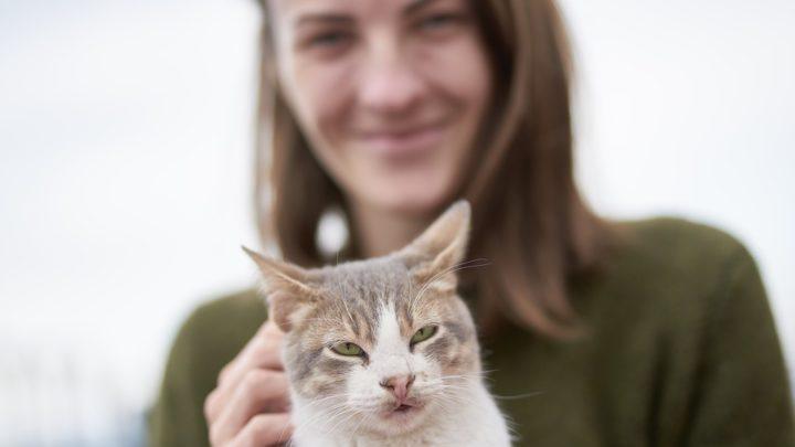 15 верных признаков кошачьей привязанности