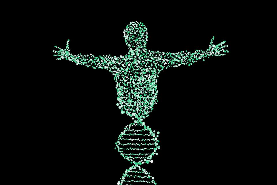 10 интересных фактов о генах