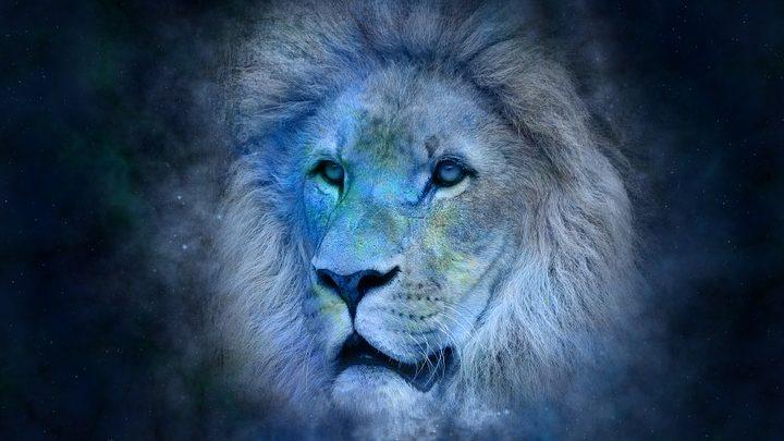 Черты характера женщин, родившихся под знаком Льва