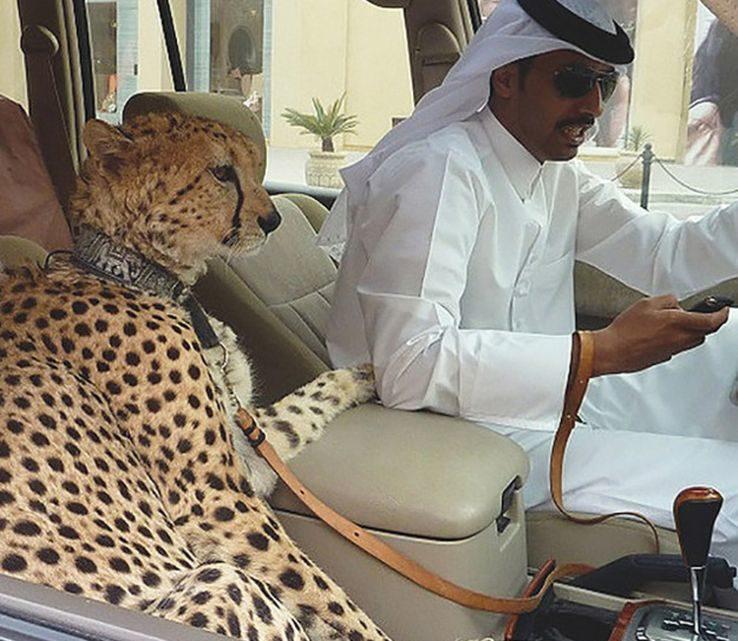 Дубай и его темная сторона