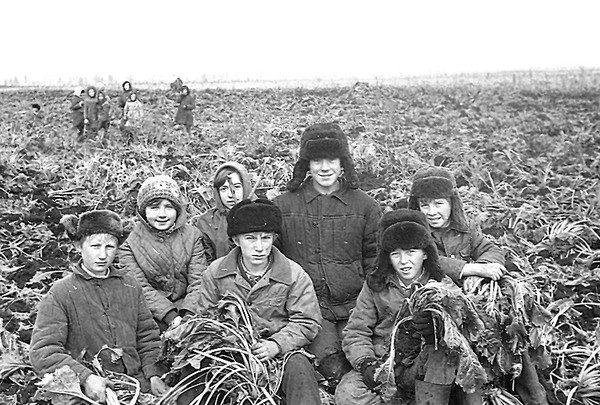 Детский труд в СССР. Метод воспитания или эксплуатация ребенка